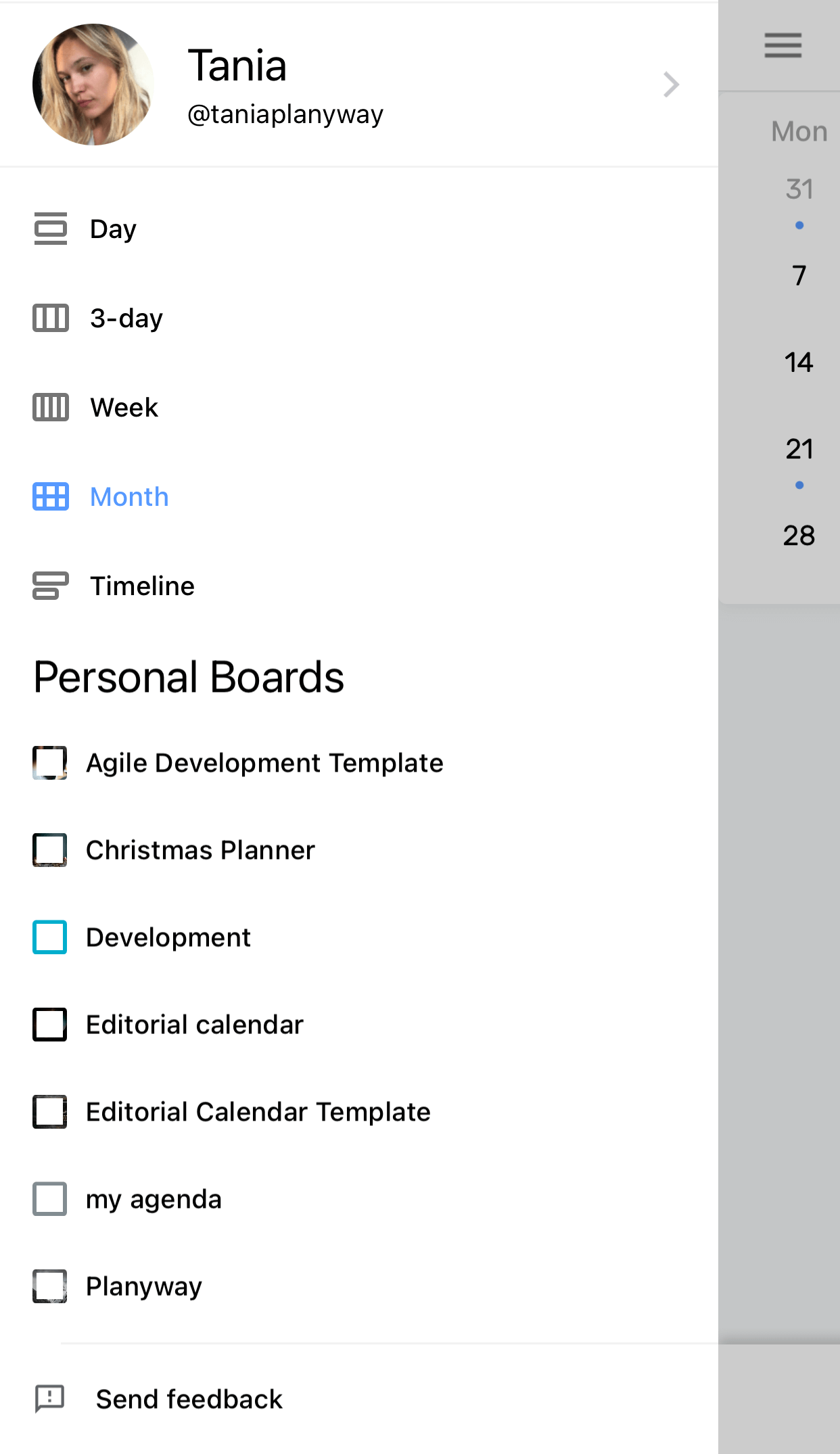 Planyway Mobile Enable Month View In Sidebar
