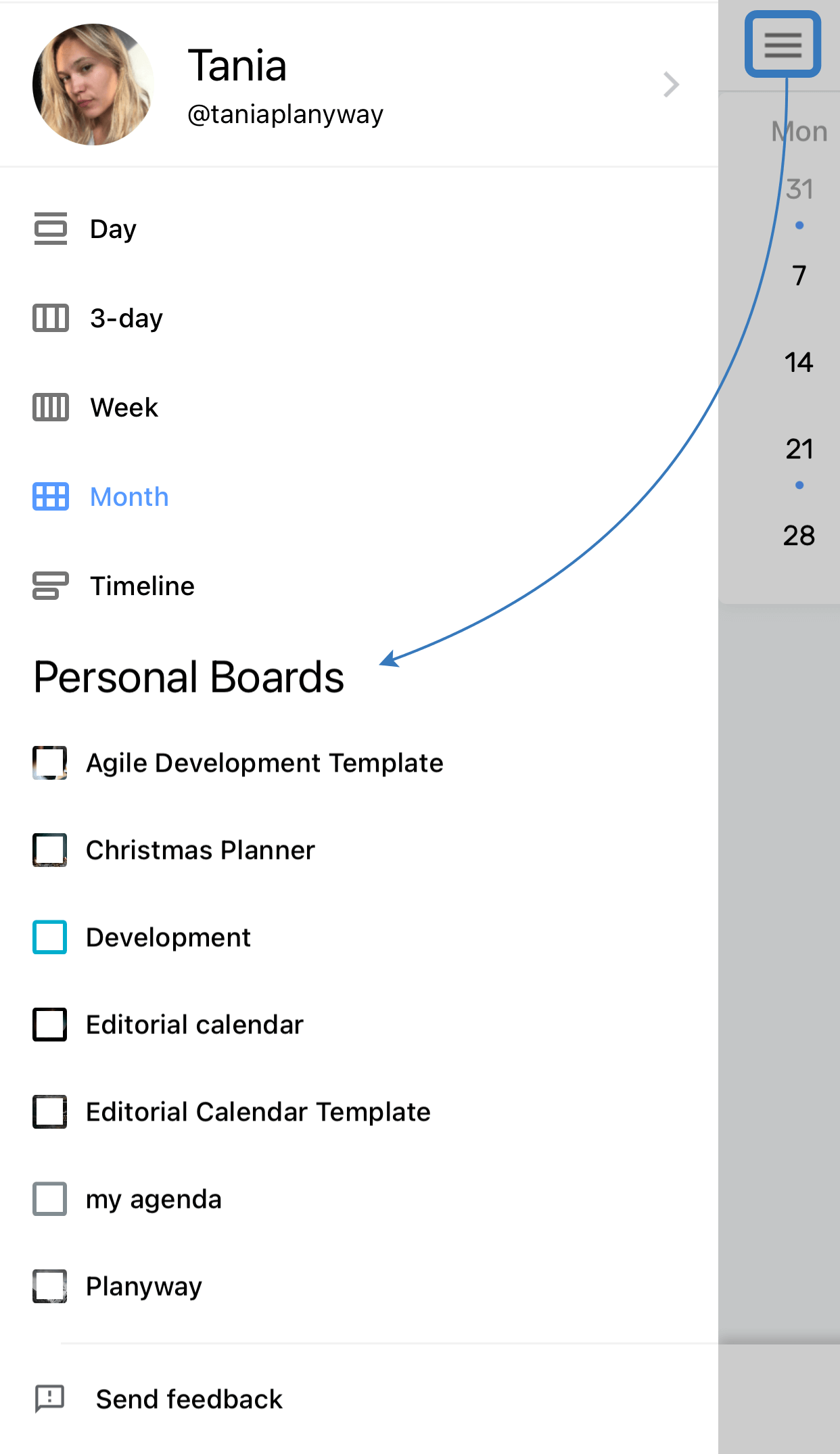 Planyway Mobile Choose Boards For Month View