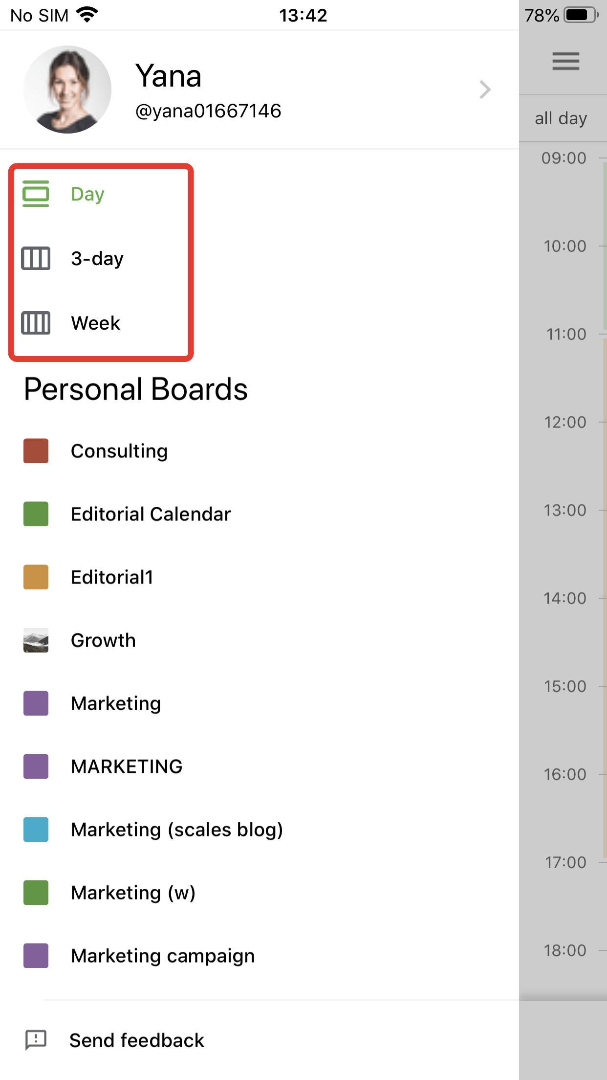 Planyway Mobile View Options